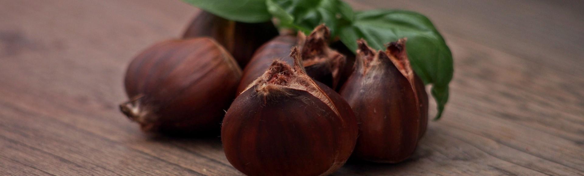 chestnut-998552
